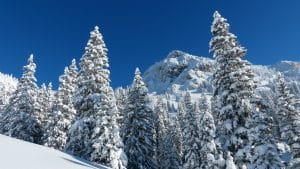 Wintersporten in Tirol