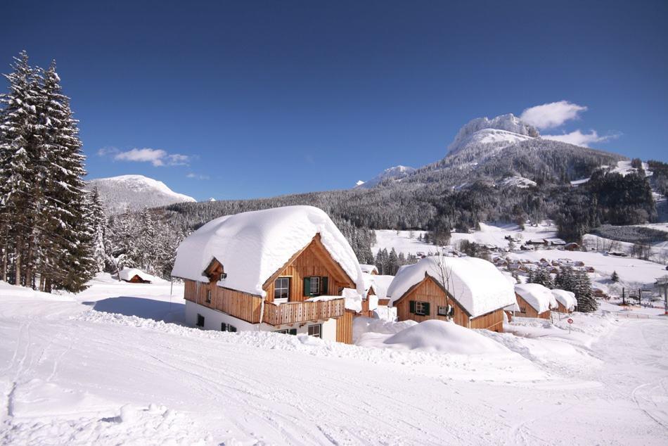 Wintersport bij Nederlanders met paplepel ingegoten